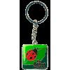 The Butchart Gardens - Ladybug